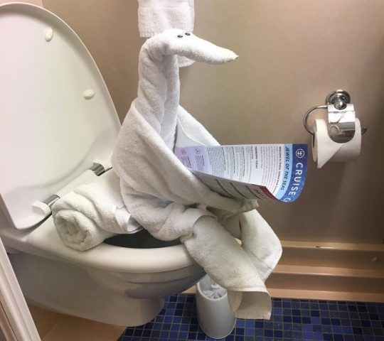Hey Facebook! Is the Internet a Toilet?